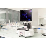 InCellis - Cell Imaging System