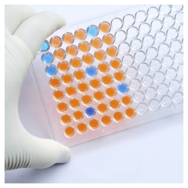 Anthrax Edema Factor Assay kit